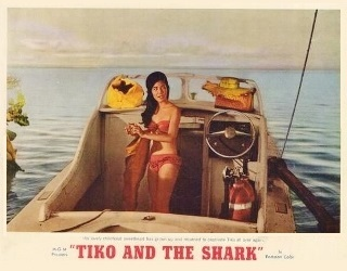 TIKO & THE SHARK